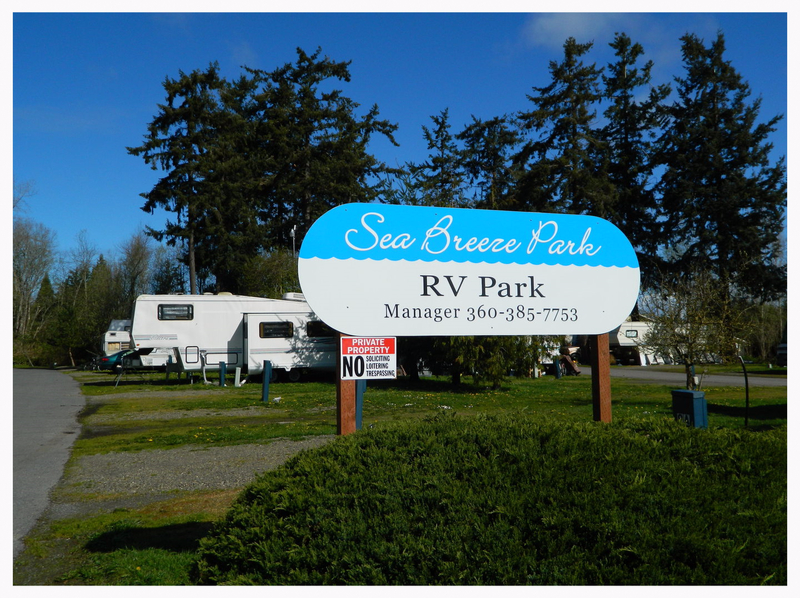 Tiny Home Friendly RV Park Port Townsend Washington