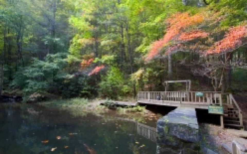 retreat-pond