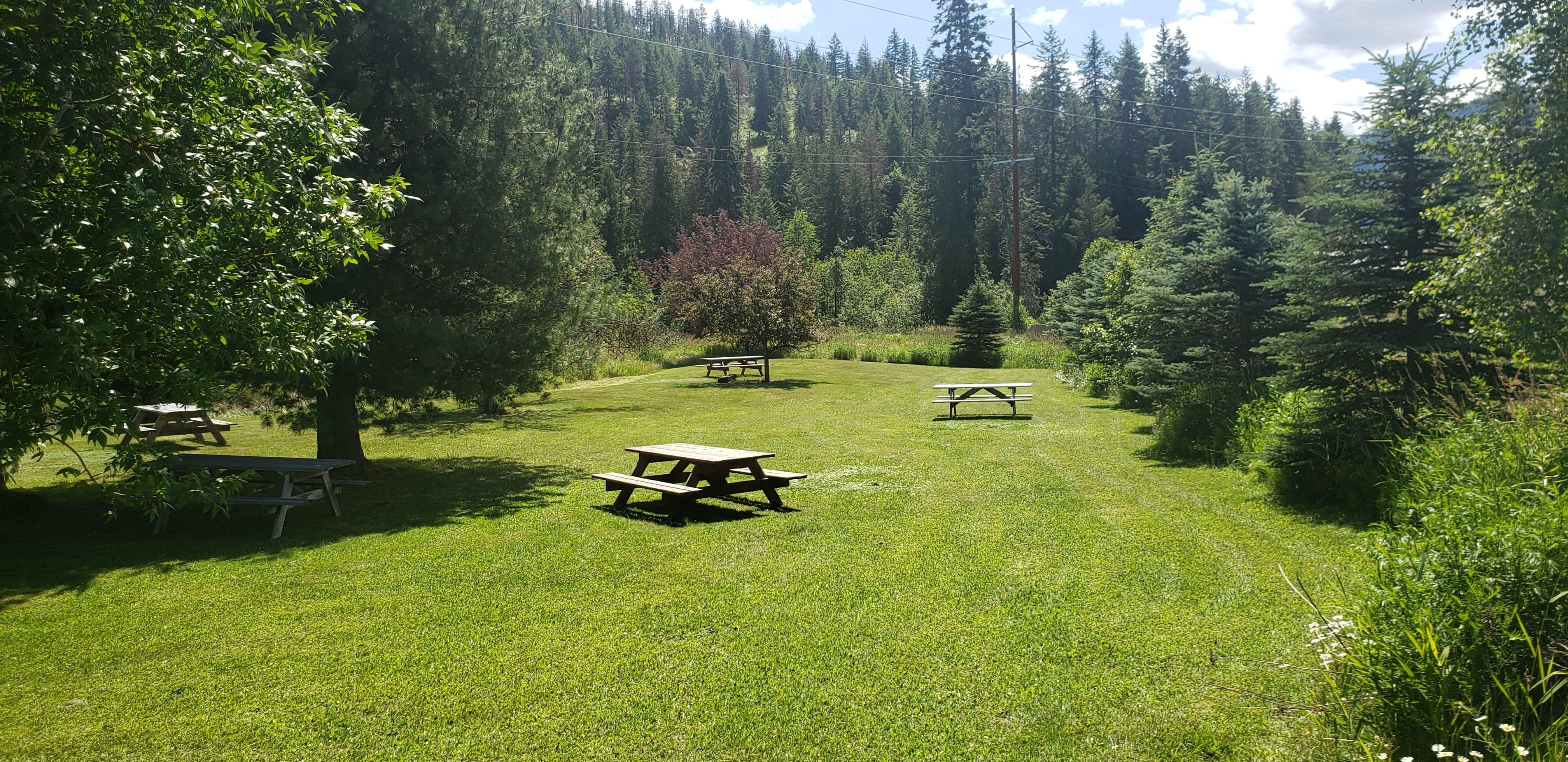 Elk Meadows pond 1
